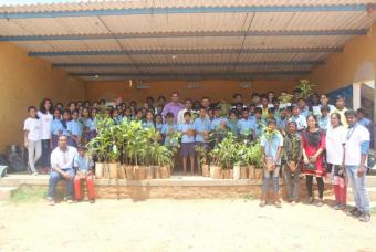 Tree Plantation Drive on World Environment Day